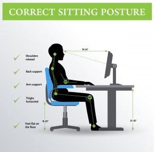 Seated Posture